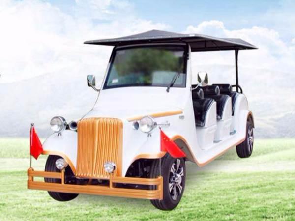 8座电动老爷车-型号DS-LY08