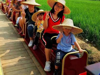 农业旅游新流量载体-稻田观光小火车