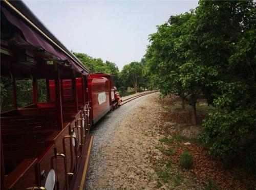 农业观光小火车