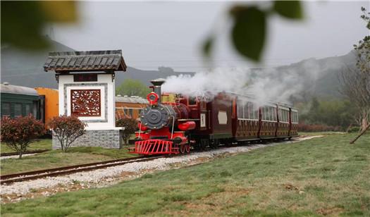 96座小火车.jpg