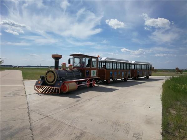 DSW-D42FB 42座燃油封闭观光小火车