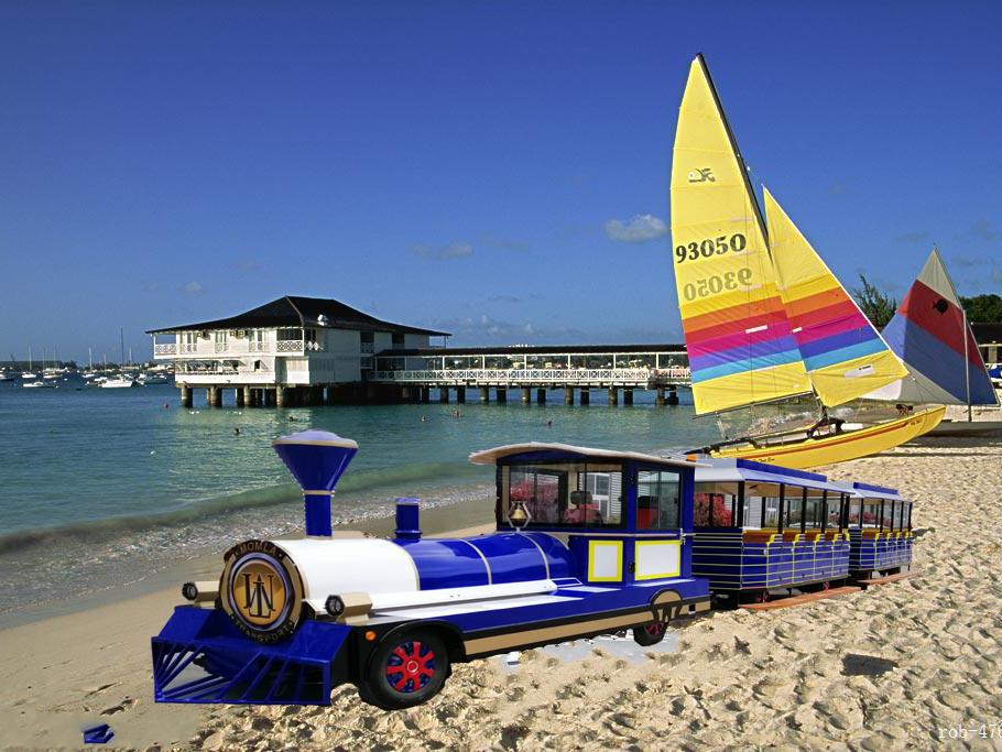 DSW-E50 50座公园观光小火车