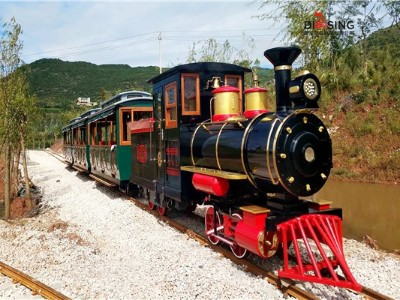 DST-G6-D54B 观光小火车景区轨道小火车
