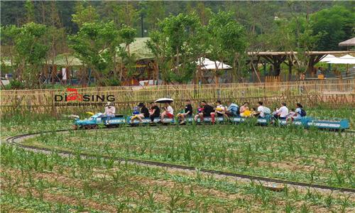 农业网红小火车