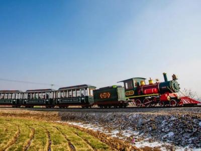 【山东】英式轨道封闭96座观光小火车