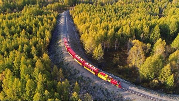 旅游观光小火车
