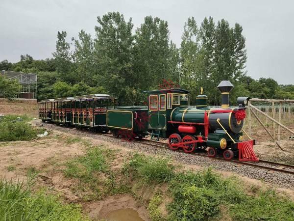 DST-G3-E36B 36座亲子森林轨道小火车