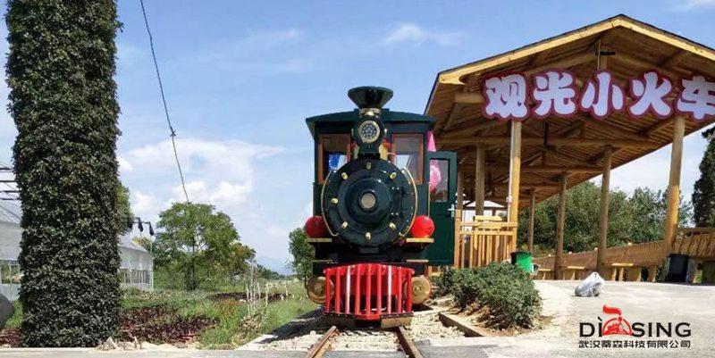 63座有轨道旅游观光小火车 DST-G6-E63
