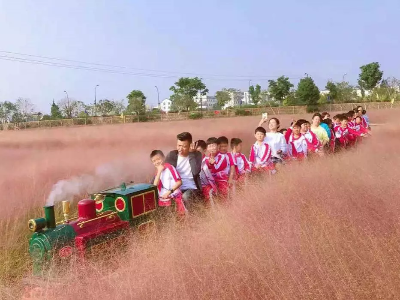 【浙江】迷你儿童轨道景区观光小火车