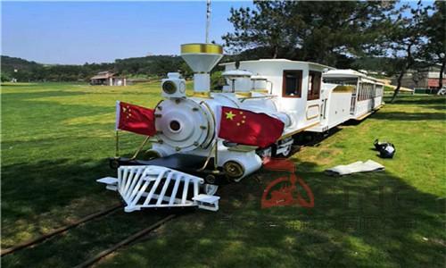 观光小火车10