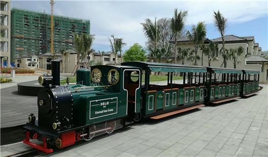 36座观光火车