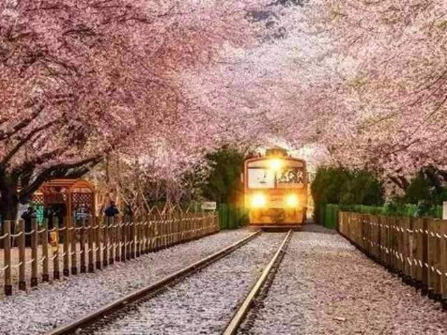 旅游观光小火车轨道铺设